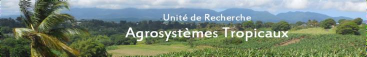 UR Agrosystèmes Tropicaux