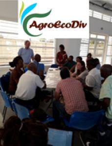 AgroEcoDiv poursuit le dialogue avec la profession (Petit-Canal, 30 et 31 mars 2019)