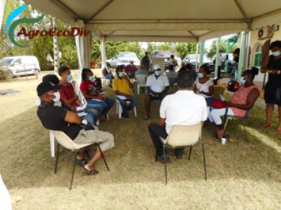 Atelier World Café pour les transitions agroécologiques NGT (Petit-Canal, 09 03 2021)