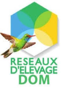 Comité de Suivi Local des Réseaux de références Elevage DOM (Baie-Mahault, 28 novembre 2019)