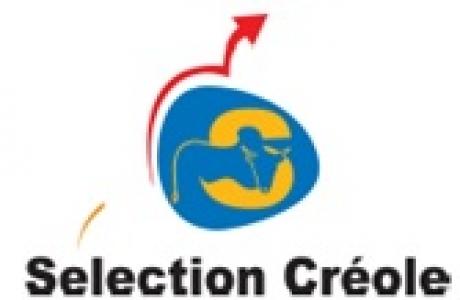 Sélection Créole – Assemblée générale 2015