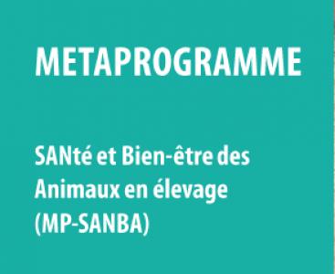 Séminaire de lancement du métaprogramme SANBA
