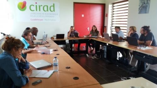 Tenue du 3e Comité Scientifique d'AgroEcoDiv (Capesterre, 19 octobre 2017)