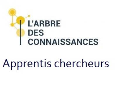 Troisième congrès des Apprentis chercheurs, 2018