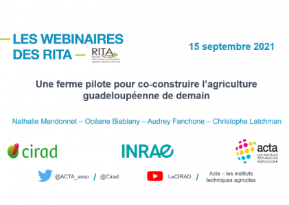 Une ferme pilote pour co-construire l'agriculture guadeloupéenne de demain (15 septembre 2021)