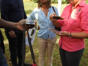 Visite invités caribéens de la Caribbean week Ferme prototype pilote en polyculture élevage Duclos Petit-Bourg 10 12 2019 MJM URZ  (13)