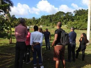 Visite invités caribéens de la Caribbean week Ferme prototype pilote en polyculture élevage Duclos Petit-Bourg 10 12 2019 MJM URZ  (5)