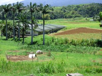Ferme pilote en agroécologie