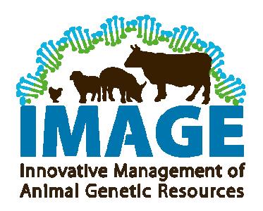 IMAGE (2016-2021)