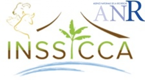 Projet INSSICCA 2015 2021