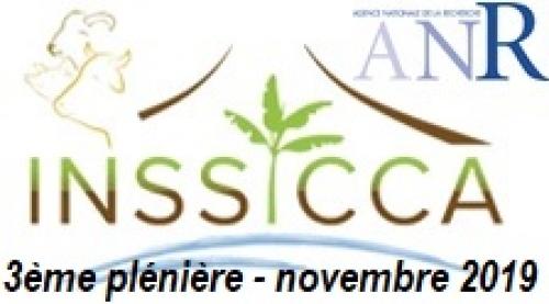 Troisième plénière du projet INSSICCA (Nancy, 5 novembre 2019)