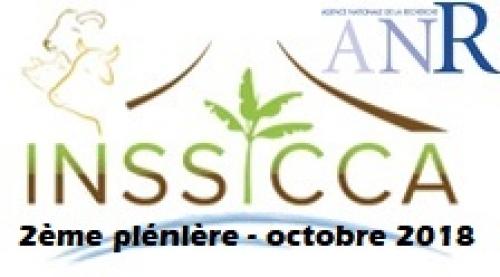 L'avancée du projet INSSICCA a fait l'objet d'une plénière