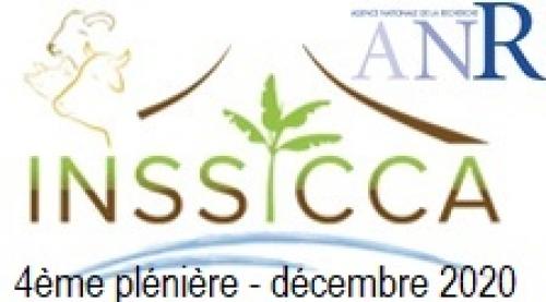 Quatrième plénière du projet INSSICCA  (Nancy, 09 décembre 2020)